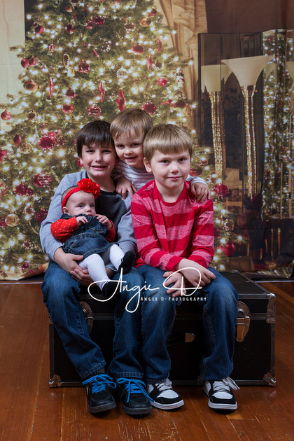 Christmas portait of the Hatton kids taken by Angie D-Photography.